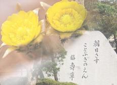 福生ことぶき苑イメージ